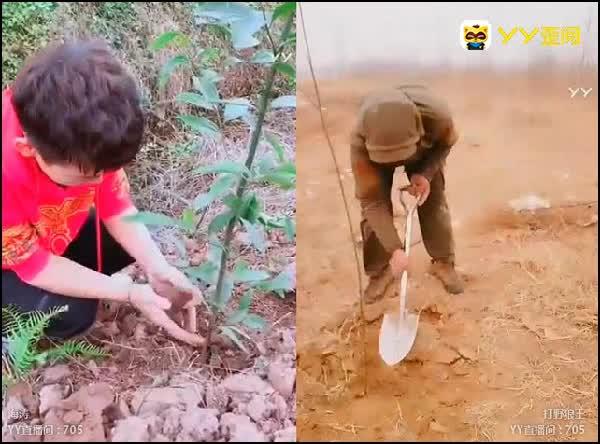 植树节!带你去植树造福下一代
